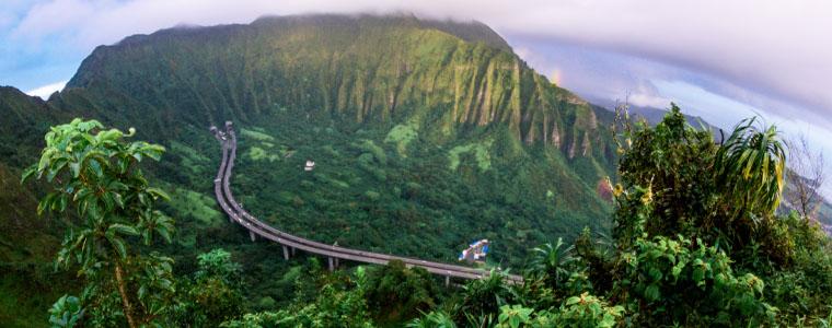 beautiful walkway in the rainforest hawaii