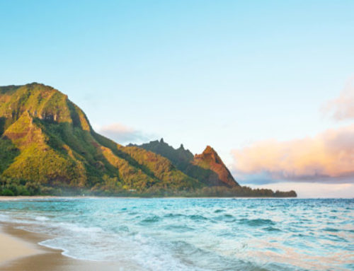 Surf, Sand, and Sun: and Our Guide to the Best Beaches on Kauai